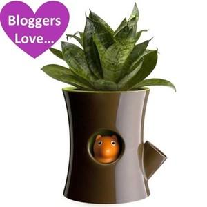 Zurb_index_log___squirrel_magical_plant_pot