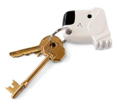 Fetch my Keys! Key Finder