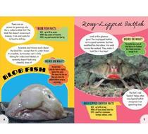Click to enlarge - Really Weird Animals Book